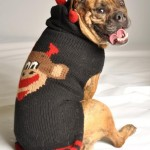 Basil's Favorite Things – Chilly Dog Sweaters