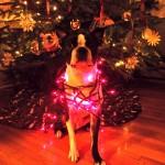 Basil's Travels Advent Calendar – December 1st 2013
