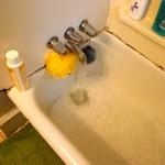 Basil's Favorite Things – Burt's Bees Dog Shampoo