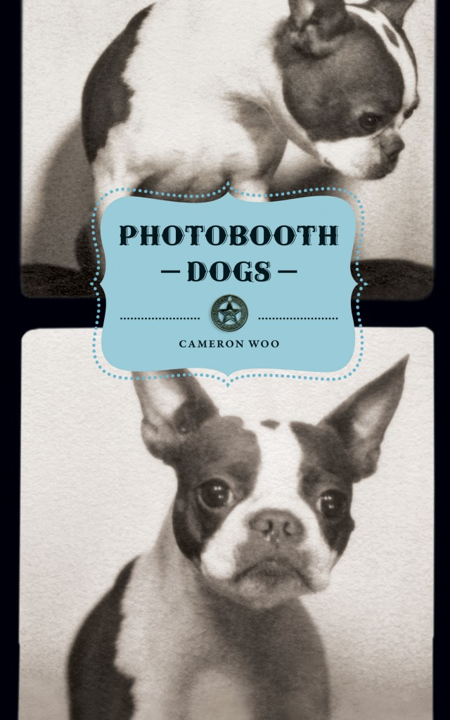 Photo Booth Dogs by Cameron Woo