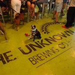 Southend Dog Crawl — Club Fetch to The Unknown Brewing Co.