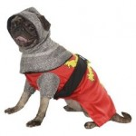 The Polls are now open! Pick Basil's Halloween costume 2014!