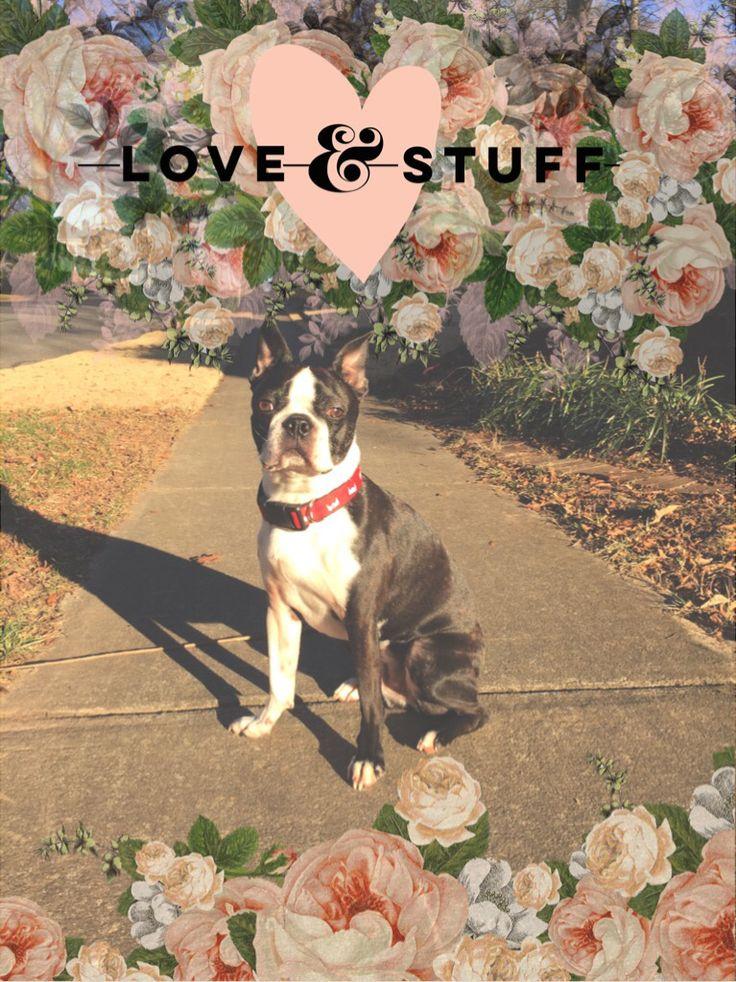 Love & Stuff