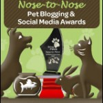 Say what?! Finalist for Best Pet Blog Photo!