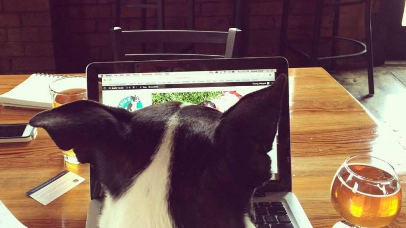 Computer Basil